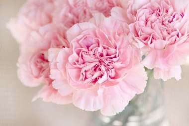 flowers-1325012 (2)
