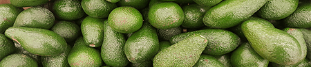 aguacatee.png
